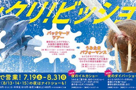 2014_summer_news