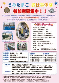 f1_img_1404889803_2014_umitama_job_experience