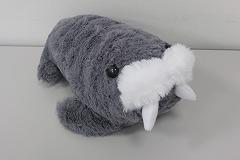 grey_walrus