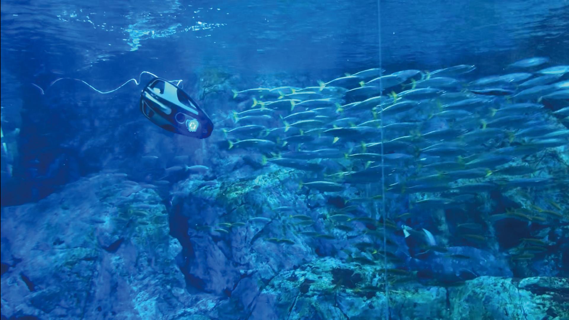 水中ドローン01