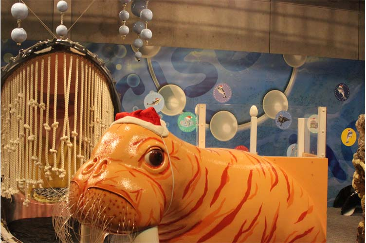 クリスマス装飾6