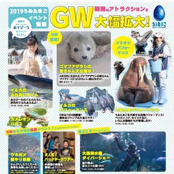 2019GWicon